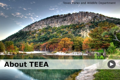 About the TEEA