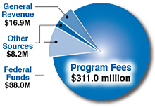 Breakdown of TCEQ revenue: program fees $311.0 million; federal funds $38.0 million; general revenue $16.9 million; other sources $8.2 million