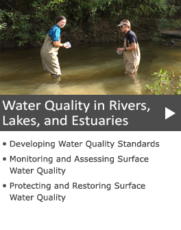 Water Quality in Rivers, Lakes, and Estuaries