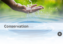 Link to conservation tips.