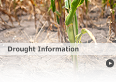 Link to Drought Information