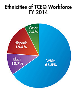 Ethnicities of TCEQ Workforce-FY2014 pie chart