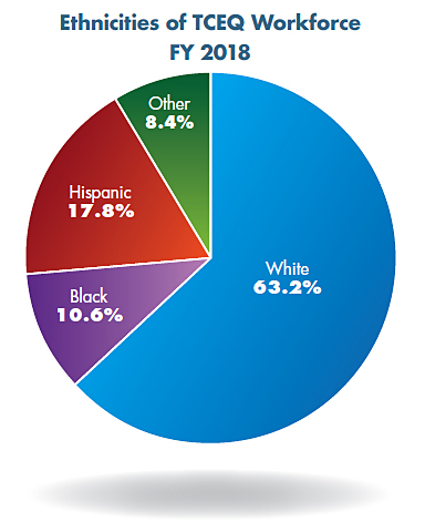 Pie chart: Ethnicities of TCEQ Workforce, FY 2018. White 63.2%, Black 10.6%, Hispanic 17.8%, and Other 8.4%.