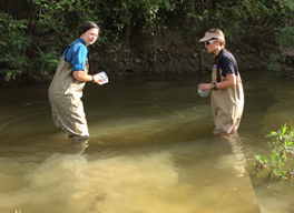 Water Quality in RIvers, Lakes and Estuaries