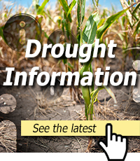 drought-information.jpg