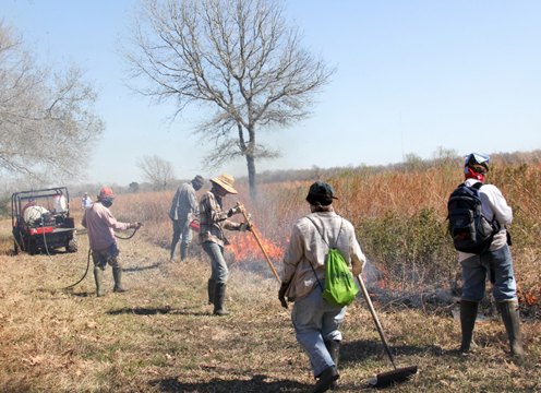 Staff and contractors perform prescribed burns at the center.