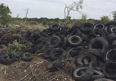 Illegally discarded scrap tires littered the landscape prior to being hauled away for recycling and disposal.