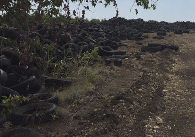 Scrap tires lined the road on the property near Gatesville prior to the multi-agency cleanup effort.