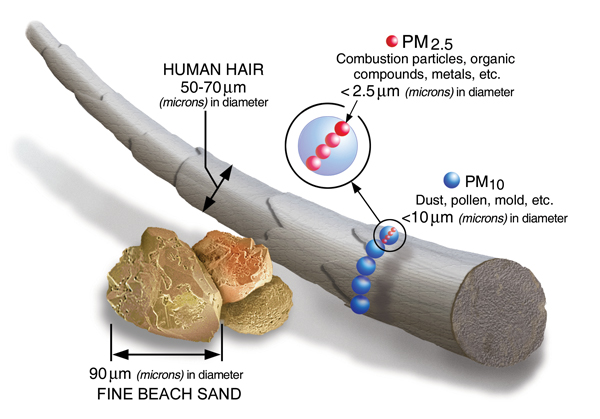 Shows how much smaller pm2.5 is than human hair or sand