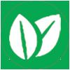 biofuels.png