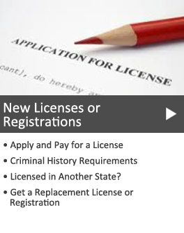 New Licenses or Registrations