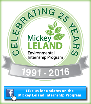 Celebrating 25 Years, 1991-2016, Like us on Facebook, Mickey Leland Environmental Internship Program