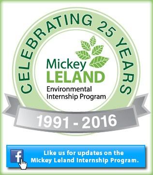 Mickey Leland 25 Year Celebration Icon