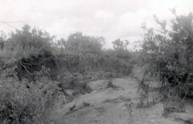 Petronila Creek after a Flood