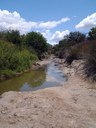 Picture from 2013; a sunny day on Petronila Creek Thumbnail Image