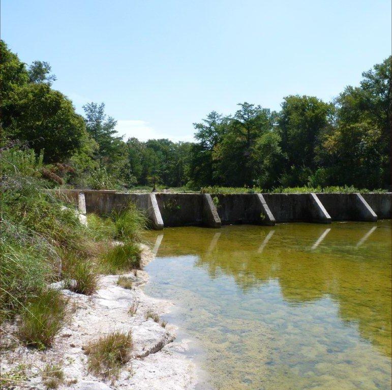 Goat Creek at Arcadia Loop